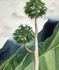 papaya-tree-iao-valley.jpg